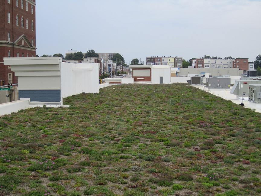 IMG 0962sm Hyattsvilles Green Roof